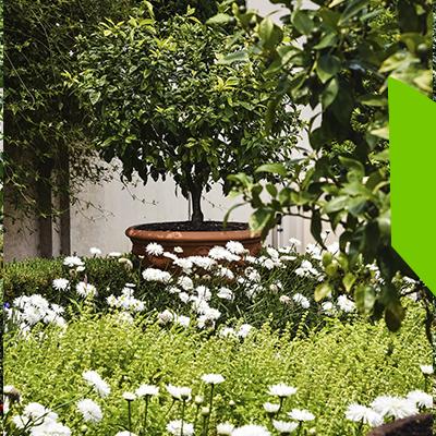 Erisa - Small space garden design - Advantages of a small garden design