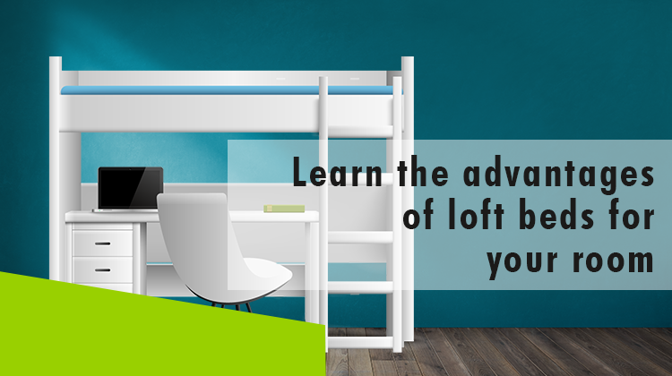 Erisa-Learn the advantages of loft beds for your room -Banner